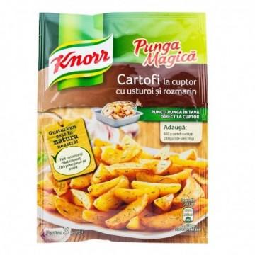 Mix condimente Knorr Punga...